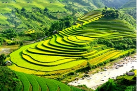 Picture of Vietnam tour 14 Days Hanoi - Sapa - Hoi An - Ho Chi Minh City