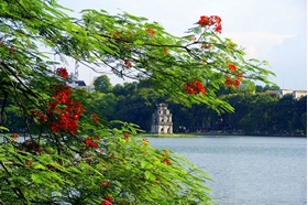 Picture of Vietnam tour 14 Days Hanoi - Hue - Hoi An - Ho Chi Minh City