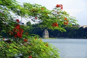 Picture of Vietnam tour 14 Days Hanoi - Hue - Hoi An - Ho Chi Minh City