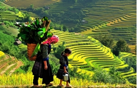 Picture for category Sapa Tours