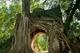 Picture of Duong Lam village - Bat Trang village private tour