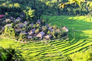 Picture of Mai Chau Ecolodge 2 days 1 night Tour