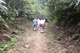 Picture of Discover A Luoi and Trek Hamburger Hill