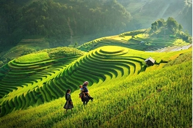 Picture of Discover real Vietnam in 18 Days 17 nights