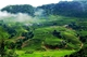 Picture of North Vietnam Adventure 12 days