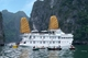 Picture of Amazing Vietnam 10 Days 9 Nights Tour from North, Central to South