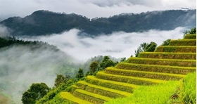 WHAT TO EXPECT FROM VIETNAM ECO TOURS