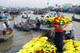 Picture of Mekong Delta 1 day tour (My Tho Ben Tre) - Private Tour