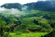 Picture of Mai Chau 1 Day Tour From Hanoi - Group Tour
